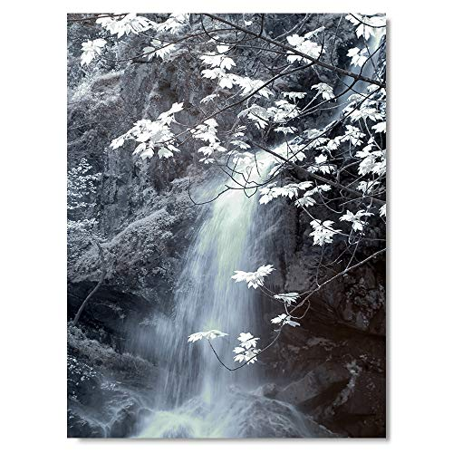 Print Wall Art Natural Landscape Infrared Photo Waterfall with Pure Blue Water and White Leaves Pictures 24