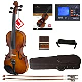 : Cecilio CVN-300 Solidwood Ebony Fitted Violin with D'Addario Prelude Strings, Size 4/4 (Full Size)