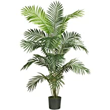 Nearly Natural 5260 Paradise Artificial Palm Tree, 6-Feet, Green
