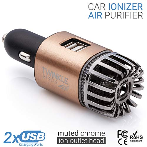 Car Air Purifier Ionizer - 12V Plug-in Ionic Anti-Microbial Car Deodorizer with Dual USB Charger - Smoke Smell, Pet and Food Odors, Allergens, Viruses Eliminator for Car (Matte Copper) (Remove The Smell Of Weed)