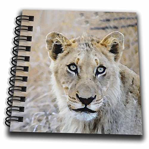 3dRose Andrea Haase Animals Illustration - Lioness Head Watercolor Illustration - Mini Notepad 4 x 4 inch (Lioness Head)
