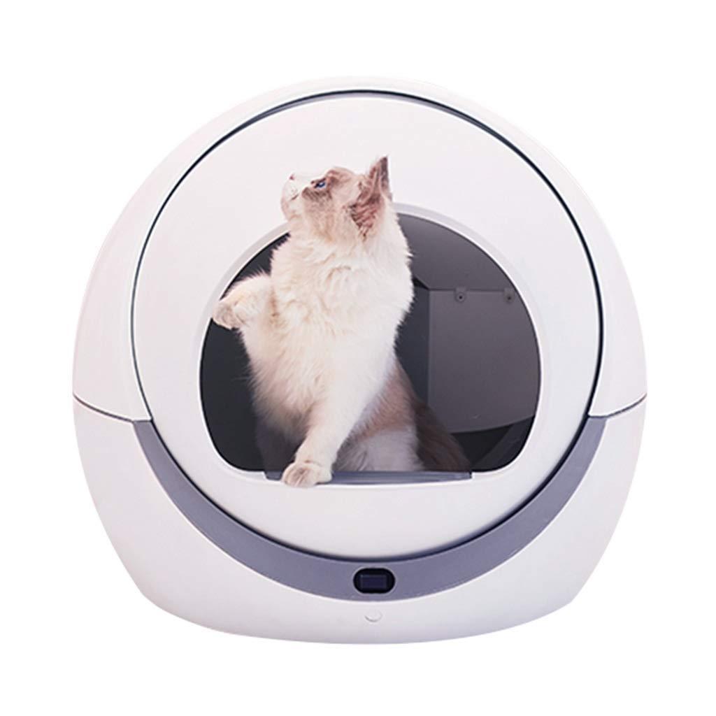 Superb Amazon Com Automatic Cats Sandbox Kitten Robot Litter Box Pabps2019 Chair Design Images Pabps2019Com