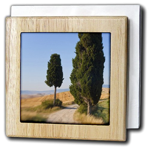 danita-delimont-italy-winding-road-val-d-orica-tuscany-italy-6-inch-tile-napkin-holder-nh-227671-1