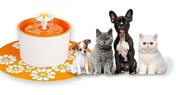 Fuente De Agua Para Mascotas Dispensador De Agua Perro Gato Salud Fuente De Cuidado Higiénico Ultra