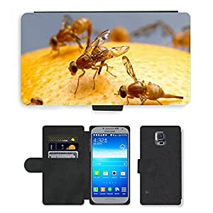PU LEATHER case coque housse smartphone Flip bag Cover protection // M00116094 Moscas de la Fruta mexicanos Insectos // Samsung Galaxy S5 S V SV i9600 (Not Fits S5 ACTIVE)