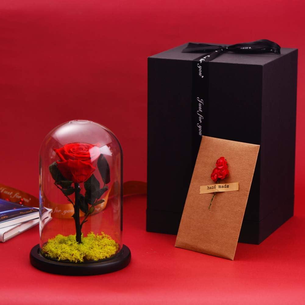 TP&DD Principito LED Flor eterna,Cubierta de Cristal con la luz Rosa,Decoración Creativa Cumpleaños Caja 20x15cm(8x6inch): Amazon.es: Hogar