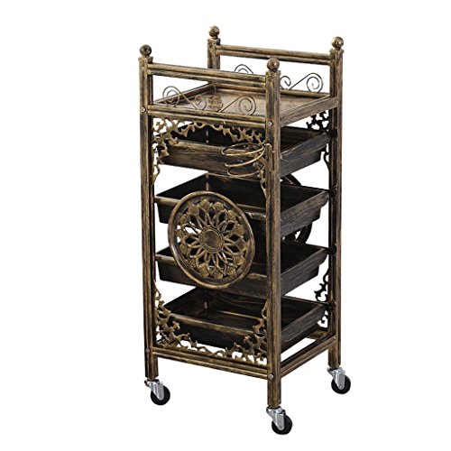 MING REN Trolley Trolley - Multi-Layer Hairdressing Tool Cart Barber Shop Beauty Shop Multi-Function Mobile Stroller Mobile Rack Four Wheels Portable Tool Storage Cart (Color : A) -