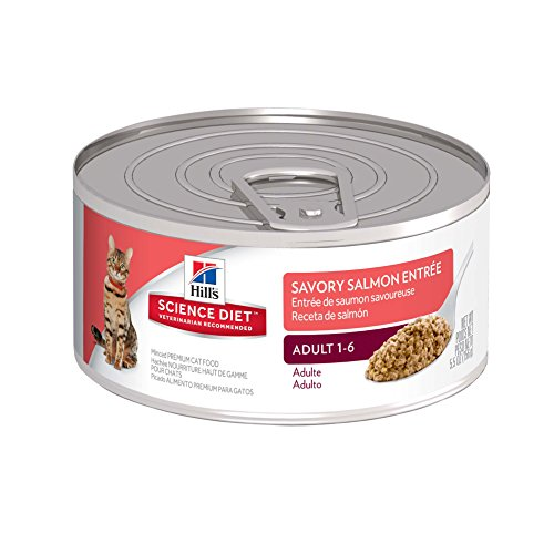 hills-science-diet-adult-savory-salmon-entree-canned-cat-food-55-oz-24-pack