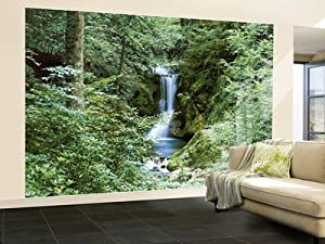 Waterfall in spring photo wallpaper wall mural for Amazon mural wallpaper