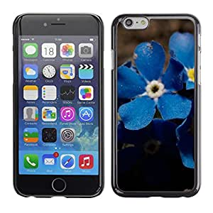 Planetar® ( Blue Suede Flowers ) Apple (5.5 inches!!!) iPhone 6+ Plus / 6S+ Plus Fundas Cover Cubre Hard Case Cover