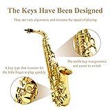 Eastar AS-Ⅱ Student Alto Saxophone E Flat Gold