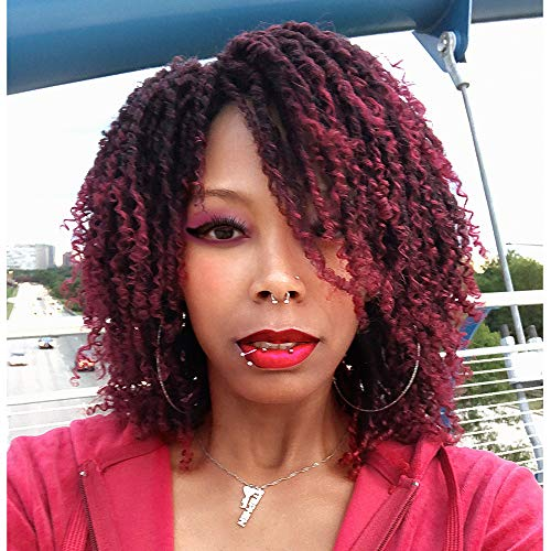 AISI QUEENS Short Dreadlock Curly Wigs for Black Women Braided Wigs African American Wig Heat Resistant Synthetic Twist Wig (Braided Hairstyles For Natural African American Hair)