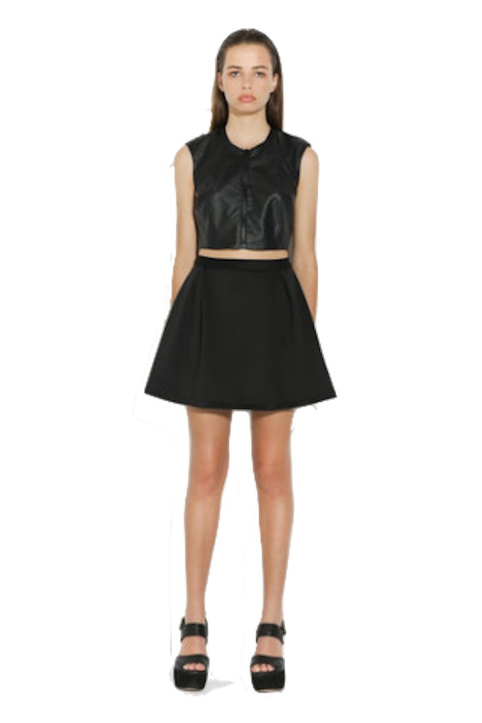 Ringuet - Pleated Fit and Flare Skirt (Black) (6)