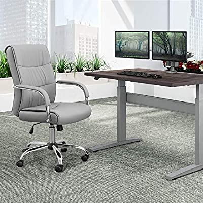 Furmax High Back Office Desk Chair Conference Leather Executive with Padded Armrests,Adjustable Ergonomic Swivel Task Chair with Lumbar Support (Gray)