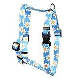 Yellow Dog Design Blue Daisy Roman Style H Dog Harness, Small/Medium