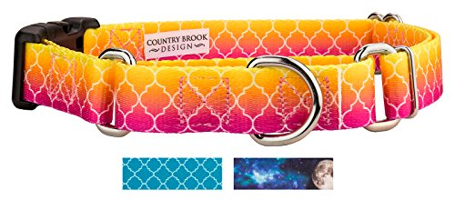Country Brook Design | Fabulous Ombre Martingale with Deluxe Buckle - Medium (Martingale Buckle Collar)