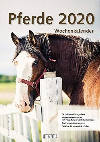 Wochenkalender Pferde 2020