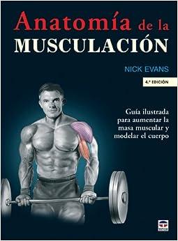 Descargar El Utorrent Anatomía De La Musculación (en Forma (tutor)) PDF Español