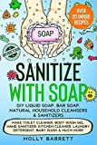 Sanitize with Soap - DIY Liquid Soap, Bar