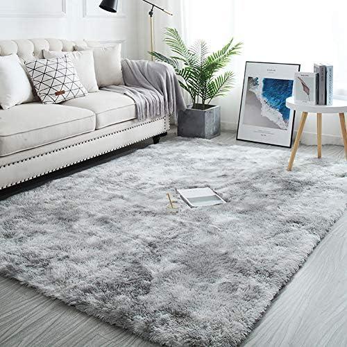 Modern Soft Indoor Shaggy Fur Area Rug