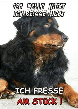 INDIGOS UG - Türschild FunSchild - SE307 DIN A5 laminiert ACHTUNG Hund Berner Sennenhund - für Käfig, Zwinger, Haustier, Tür, Tier, Aquarium Tür PEMA