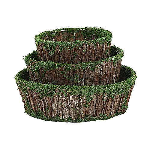 Edgewater Parts Bark Moss Dish Garden Planters, Set of 3, Small 7.75