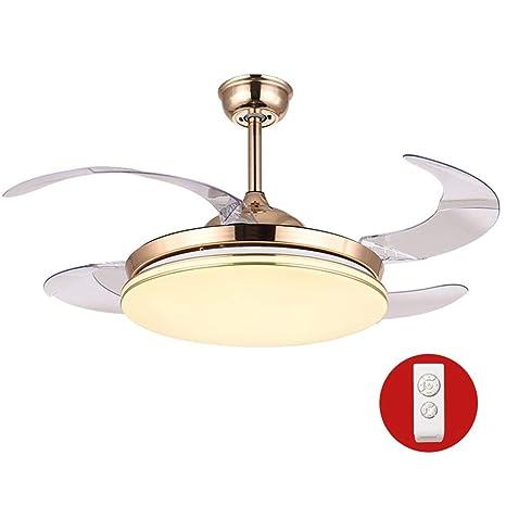 Amazon.com: Ventilador de luz de techo de 42 pulgadas, 3 ...