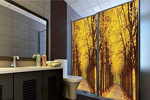 Horrisophie dodo 3D Privacy Window Film No Glue,Landscape,Botanical Garden Autumn Leaves in The Fall Linden Alley in Kiev Ukraine Image,Yellow Brown,70.86