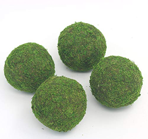 Nice Balls - Nice purchase Handmade Natural Green Plant Moss Balls Decorative for Home Party Display Decor Props (4 in)