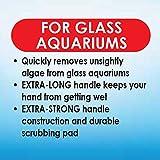 API ALGAE SCRAPER For Glass Aquariums 1-Count
