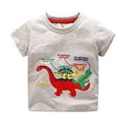 Todaies Toddler Kids Baby Boys Clothes Short Sleeve Dinosaur Print Tops T-Shirt Blouse 3 Colors 2018 (2-3T, Gray)