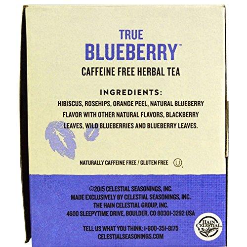 Celestial Seasonings True Blueberry Herbal Tea, 20 Count (Pack of 30) by Celestial Seasonings (Image #1)