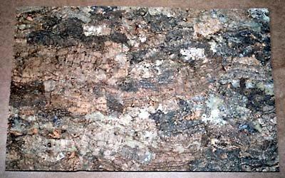 Face arrière en liège, plateau décoratif Taille 90x 60cm M&S Reptilien