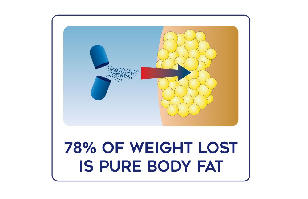 Lipozene Weight Loss Pills 2x30 Count Bottles with 30 Count MetaboUp Plus by Lipozene (Image #3)