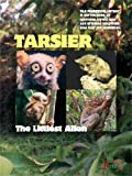 Tarsier: The Littlest Alien