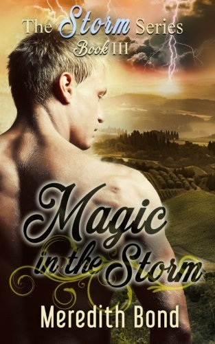 book cover of Magic In The Storm