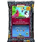 Pennington Select Black Oil Sunflower Seed Wild Bird Feed, 40 lbs