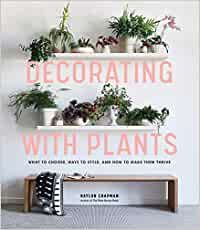 Decorating with Plants: What to Choose, Ways to Style, and How to
