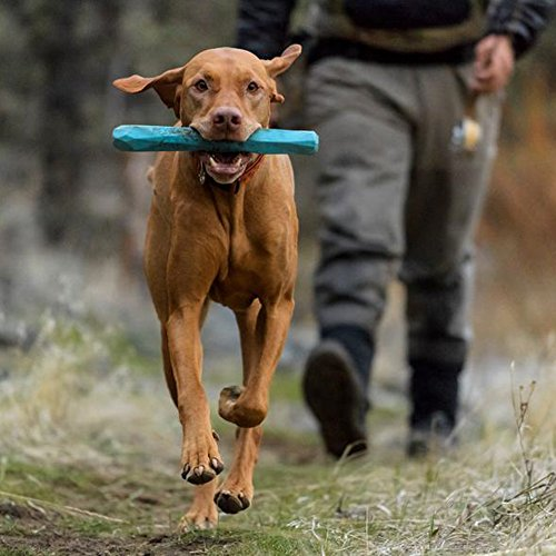RUFFWEAR Gnawt a Stick Durable Dog Toy, Dandelion Yellow, One Size