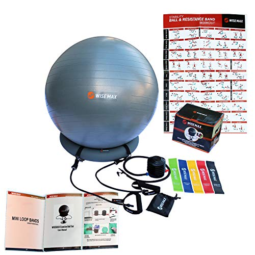 WISEMAX Exercise Ball Chair - Stability Yoga Balance Ball with Inflatable Ring Base, Resistance Bands & Pump, Loop Bands, Carry Bag, Poster for Home, Office, Posture, Gym Bundle- 65cm ()