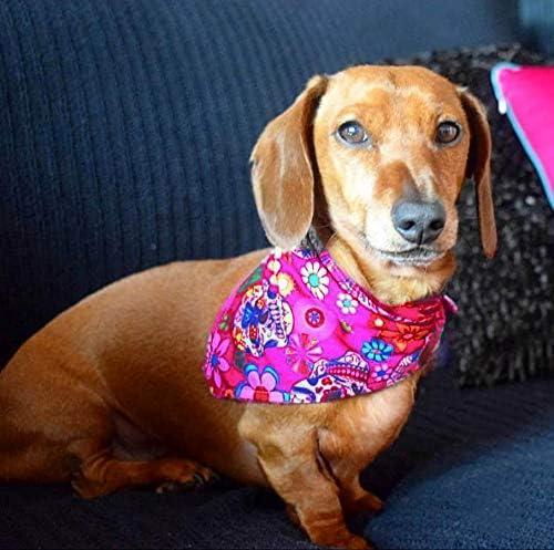 Hunde Besitzer Geschenk Dimples Hundehalstuch Halstuch f/ür kleine mittlere und Grosse Hunde Welpen und Katzen Mexikanische Totenk/öpfe schwarz Handgemachtes Hunde Accessoire