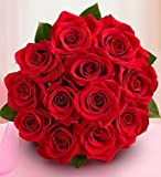 Valentine's Day 1-800-Flowers - One Dozen Red Roses - Bouquet Only By...