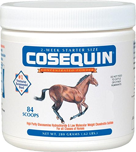 COSEQUIN ORIGINAL JOINT SUPPLEMENT FOR HORSES - 280 GRAM