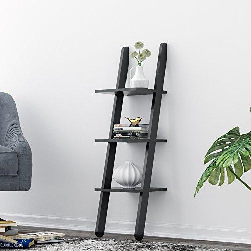 Leaning Shelf, LOYOKI 3-Tier Wall Decor Bookcase Stand Mounted Ledge Ladder Shlef Unit Black Finish