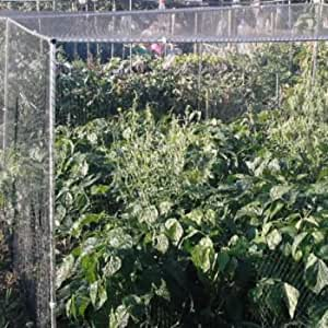 Vegetable Cage H1.5m x W900mm x L3.6m with Butterfly Netting & Joiners