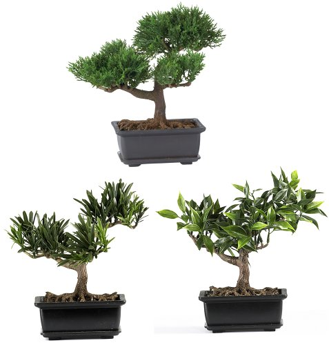 Nearly Natural 4122 Bonsai Decorative Silk Plant Collection, 8.5-Inch, Green, Set of 3 by Nearly Natural