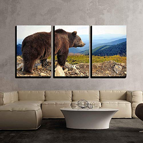 Bear Canvas Wall Art - wall26 - 3 Piece Canvas Wall Art - Big Brown Bear (Ursus Arctos) in The Mountain - Modern Home Decor Stretched and Framed Ready to Hang - 24