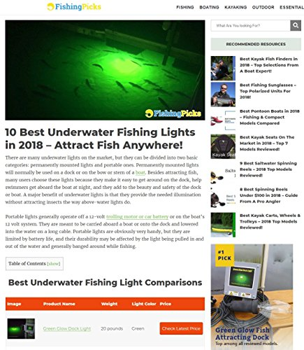 Bright Green Underwater Fishing Lights, Double Lamp Kit with 50' Cords Saltwater or Fresh by Green Glow Dock Light (Image #1)