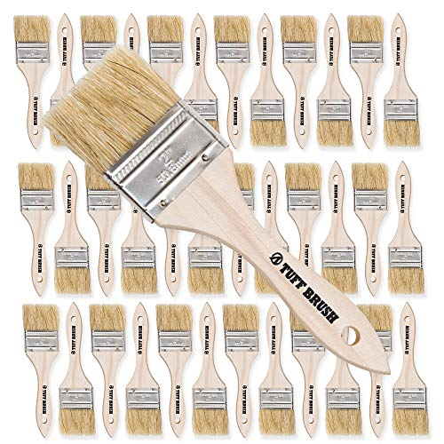 TUFF BRUSH - 50 Pack of 2 inch Chip Brushes for Paint, Stains, Varnishes, Glues, Resins, and Gesso -