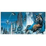 DC COMICS - Gotham city skyline (Decorative Panel 39.5x19.5 inches)